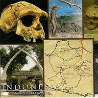 Di chỉ khảo cổ của người tiền sử ở Sangiran