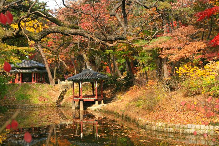Cung điện Changdeokgung là Cung điện thuần túy Hàn Quốc nhất trong số tất cả các cung điện.