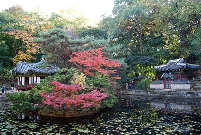 Changdeokgung phản ánh giá trị kiến trúc tinh tế, đồng thời nó có ảnh hưởng rất lớn tới sự phát triển kiến trúc, thiết kế sân vườn, quy hoạch cảnh quan và những lĩnh vực nghệ thuật có liên quan trong nhiều thế kỷ.