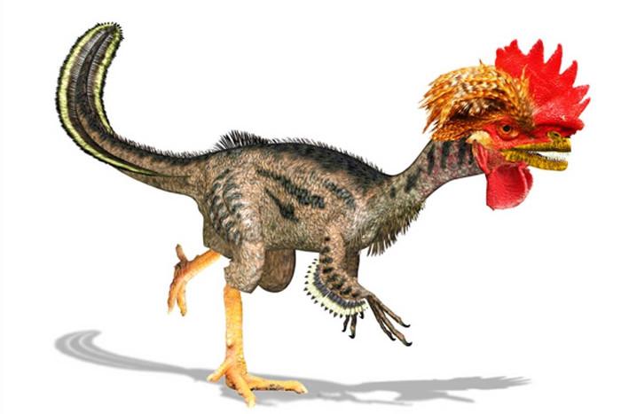 Khủng long ra đời từ gà biến đổi gene.