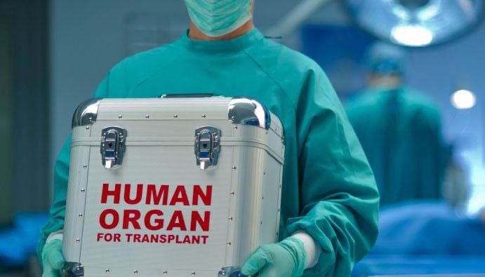Giới khoa học đã tìm cách cấy ghép nội tạng người và động vật từ thế kỷ 18 nhưng đến năm 1869 ca ghép da đầu tiên mới được thực hiện.