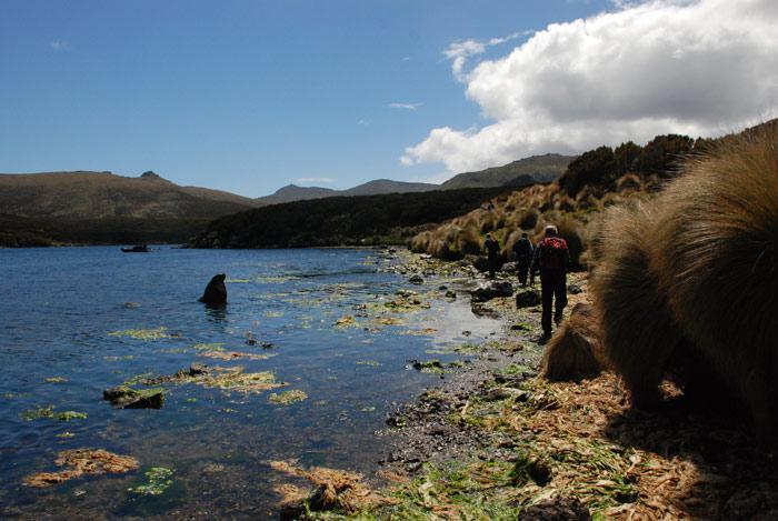 Một vài nhà sinh vật học đang trong chuyến nghiên cứu, thực địa tại đảo
