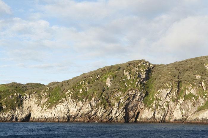 Đảo Auckland là đảo chính