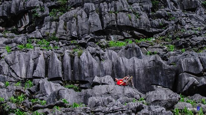 Rừng đá tại Lũng Táo với đủ hình thù to nhỏ xếp chồng chéo nhưng cùng chung một màu đen xám hoang hóa. Sức sống mãnh liệt vẫn hiện lên từ những thân ngô xanh mướt mọc lên từ chính những hốc đá nơi đây.