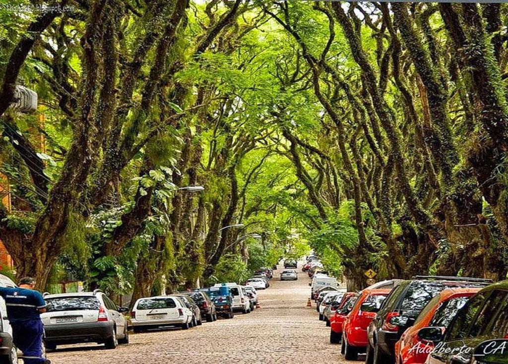 con đường là một phần của di sản lịch sử văn hóa, sinh thái và môi trường của Brazil.