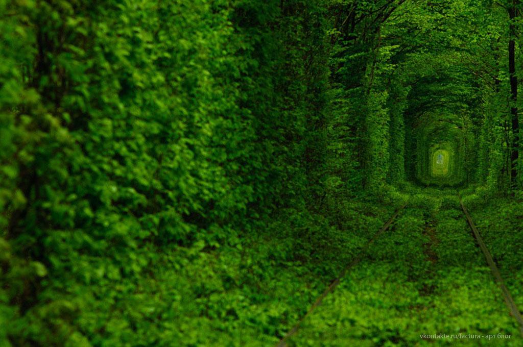Đường hầm tình yêu ở Ukraine chính là đoạn đường sắt dài 3km tại làng Kleven, vùng Rivne