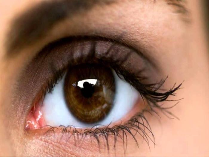 Đôi mắt có thể trở thành cửa sổ của não bởi các mạch máu sau mắt biểu lộ tình trạng não bộ.