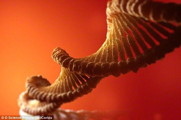 Chuỗi ADN.