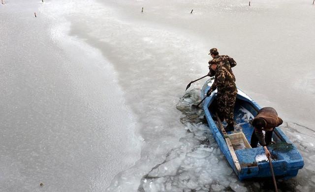 Mặt hồ đóng băng tại tỉnh Sơn Đông, miền đông Trung Quốc.