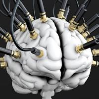 Mỹ phát triển chip cho phép não người và máy tính giao tiếp trực tiếp với nhau