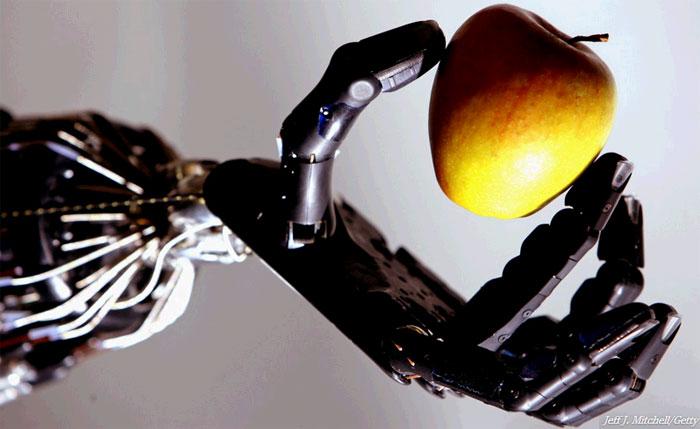 Trong 30 năm nữa, robot sẽ là một phần không thể thiếu trong cuộc sống.