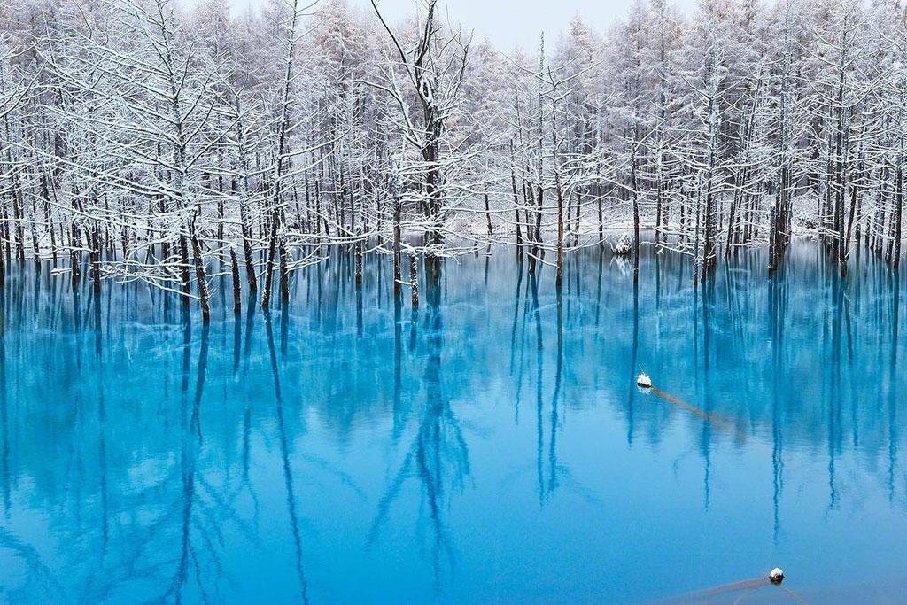 Ao nước Blue Pond nằm trên bờ trái của sông Bieigawa, gần thị trấn Biei trên đảo Hokkaido của Nhật Bản. Blue Pond mang một màu lam ngọc tuyệt đẹp, phía trên là rừng cây trơ trụi phủ tuyết trắng.