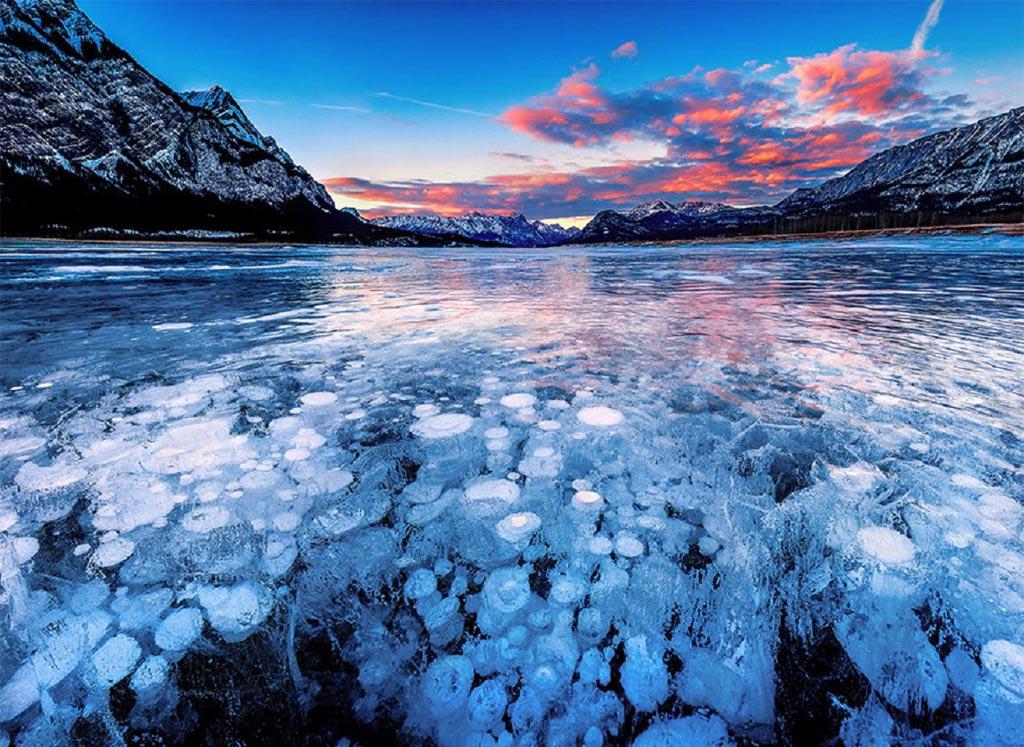 Những bong bóng khí bị đông cứng dưới hồ Abraham ở Alberta (Canada) trông như một tác phẩm nghệ thuật độc đáo.
