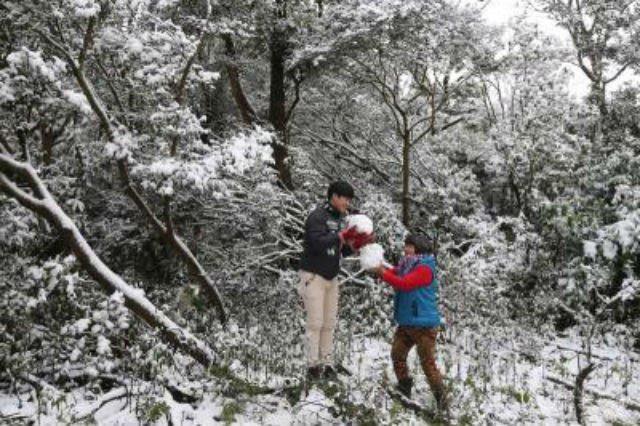 Người dân ra ngoài chơi tuyết.