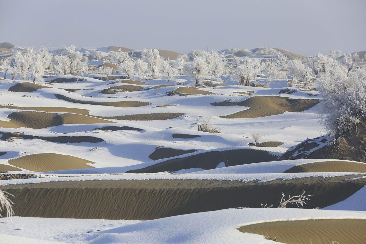 Tuyết rơi trên sa mạc Taklimakan ở khu tự trị Tân Cương.