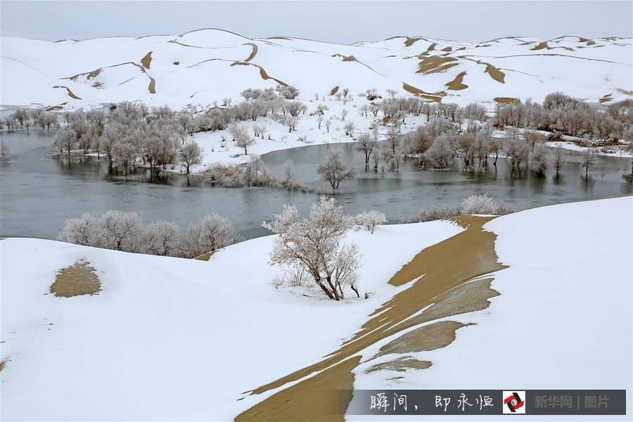 Màu trắng của tuyết được điểm xuyết bởi màu vàng của cát, tạo cảnh đẹp siêu thực.