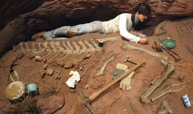 Đây là loài khủng long rất khác lạ so với những loài từng được phát hiện trên thế giới.