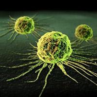 Ung thư có thể lây từ người sang người?