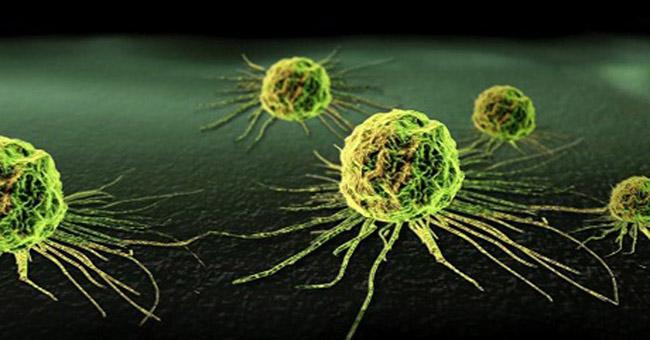 Ung thư có thể lây từ người sang người không?