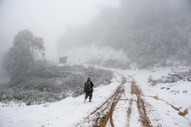 Theo ông Bùi Trầm, Chủ tịch huyện Kỳ Sơn (Nghệ An), tuyết bắt đầu rơi tại địa bàn từ ngày 24/1 kéo dài đến hôm sau.
