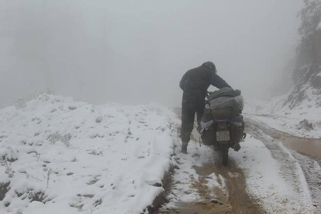 Phó tổng giám đốc Trung tâm khí tượng thủy văn quốc gia Lê Thanh Hải cho biết hiếm có khi nào thành phố Vinh xuống xấp xỉ 7 độ C như ngày 24/1, băng giá ở các huyện miền Tây cũng rất hiếm gặp. Riêng tuyết thì trước nay chưa bao giờ ghi nhận, cho đến hôm qua.