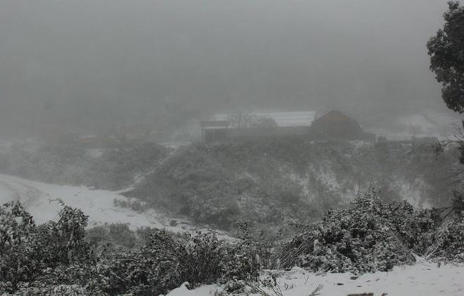Nhiều bản làng, cây cối ở Na Ngoi trắng xóa trong lớp tuyết.