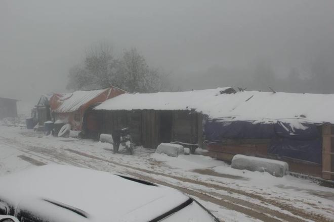 Mái nhà đọng tuyết kéo dài từ ngày 24/1 đến sáng nay.