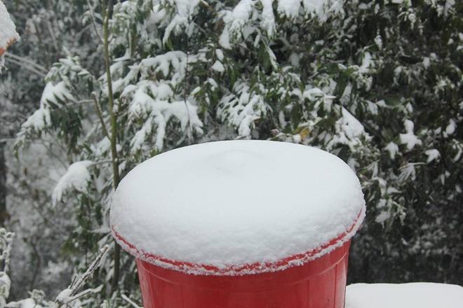 Lớp tuyết dày hơn 10cm trên nắp xô nhựa.