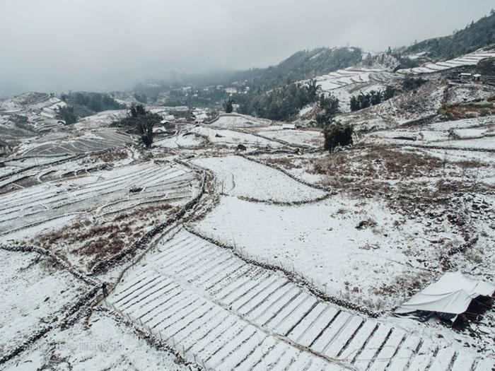 Những thửa ruộng bậc thang khi tuyết phủ trắng cuối tuần qua.