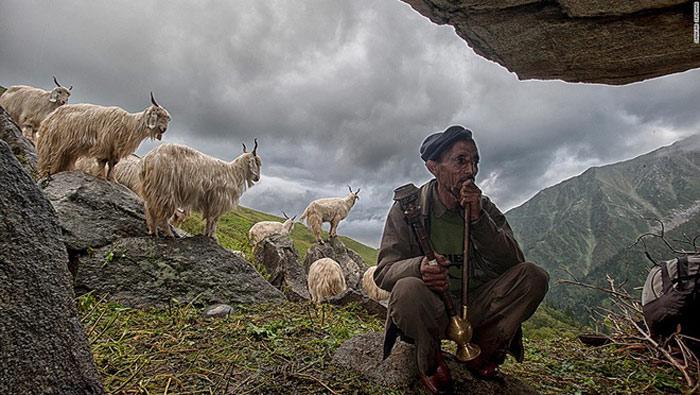Một người dân Gaddi (tộc người sống chủ yếu ở bang Himachal Pradesh) đang nghỉ ngơi giữa buổi chăn dê bằng cách hút thuốc. Ông ngồi trong cửa động và đợi cho bầu trời quang mây.