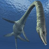 Quái vật biển cổ dài ở Anh có thể là loài khủng long mới