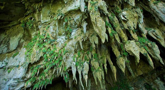 Hang động có cấu trúc hoàn hảo,với sự kết hợp của các lớp đá vôi tinh khiết, thác nước cao.