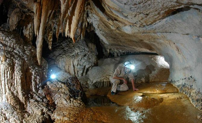 Toàn bộ diện tích các hang động ở Vườn quốc gia Gunung Mulu vào khoảng 11.000m2