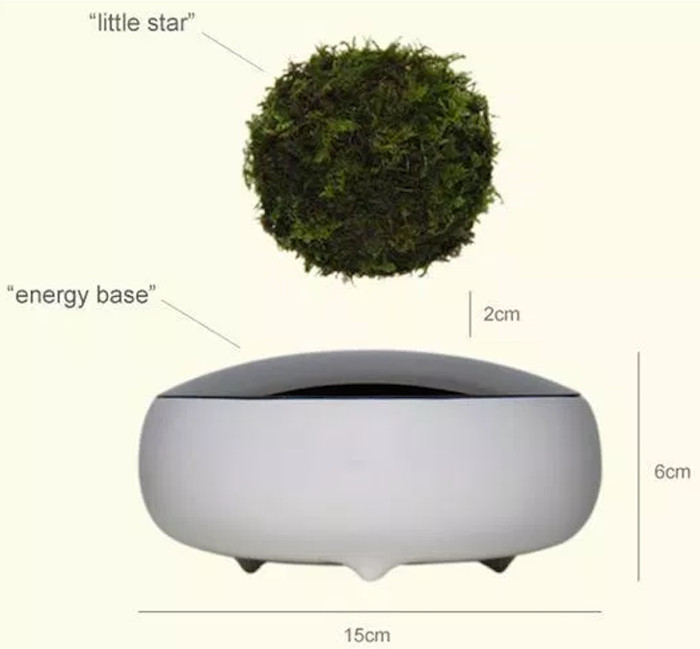 Cấu tạo của một chậu air bonsai.