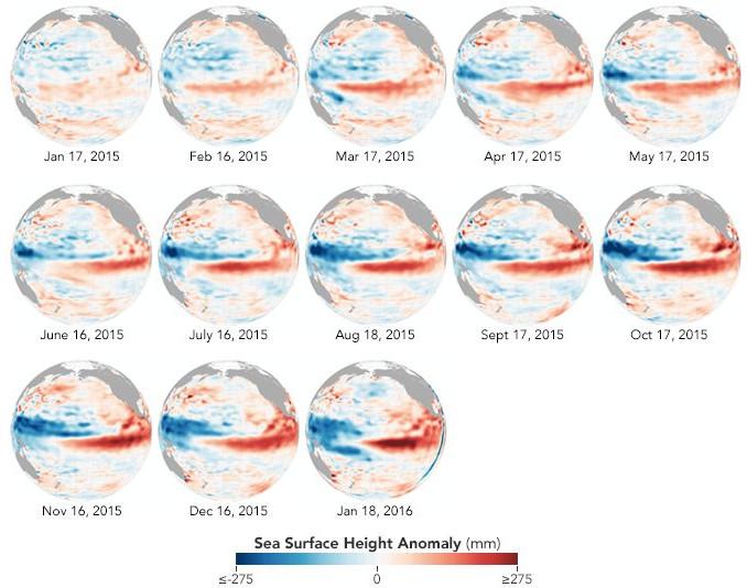 So sánh sự bất thường độ cao mực nước biển theo tháng từ tháng 1/2015 - tháng 1/2016.