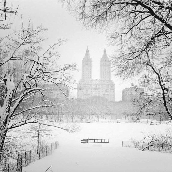 """Vivienne hiện đang theo đuổi dự án có tên """"NY through the lens"""" (NY qua ống kính), tập hợp những khoảng khắc rất New York khi cô lang thang quanh thành phố."""