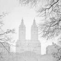 New York đẹp như thiên đường trong cơn bão tuyết lịch sử