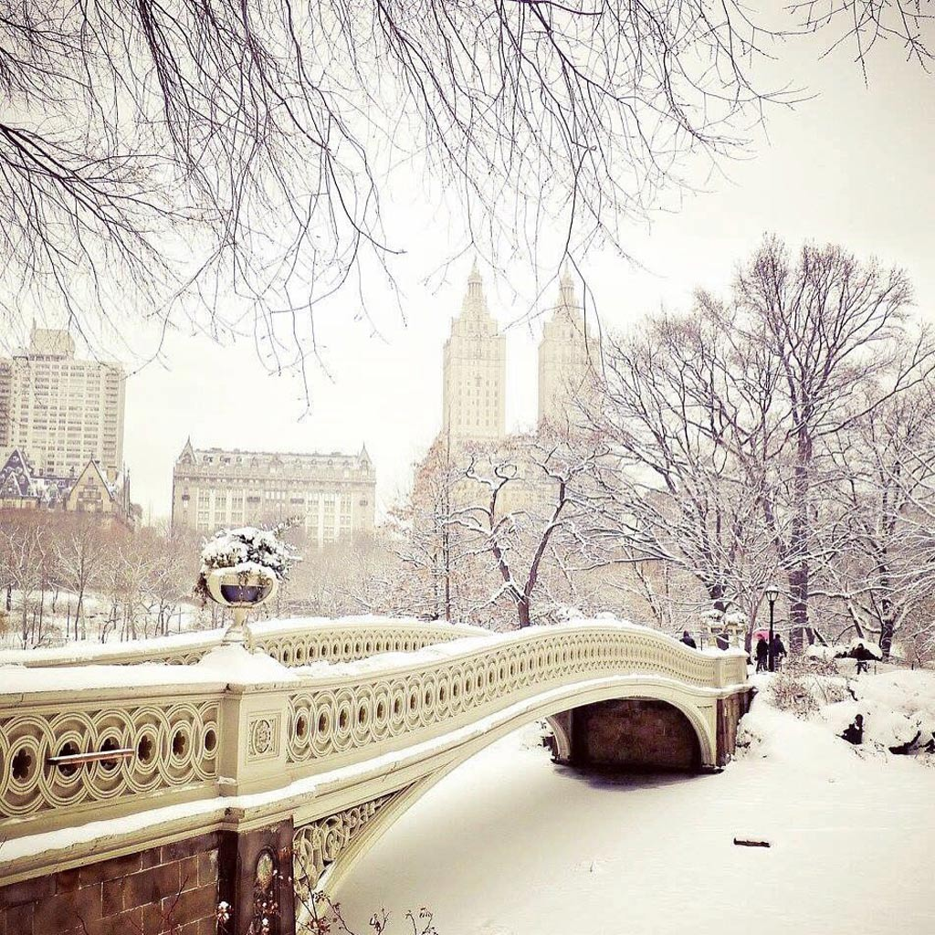 Công viên Central Park nổi tiếng trong ngày tuyết phủ.