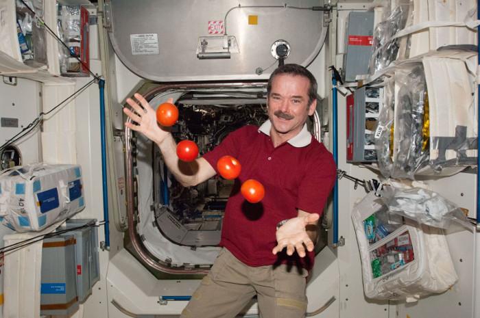 Trên ISS, các phi hành gia vẫn được ăn rau quả tươi.