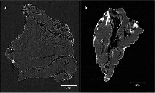 Hình chụp cắt lớp của một thỏi sáp tô.