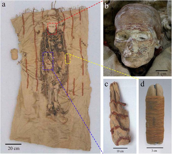 Một xác ướp phụ nữ ở nghĩa trang Xiaohe được chôn cùng thỏi sáp tô và dương vật gỗ.