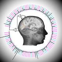 Máy tính đã có thể đọc được suy nghĩ con người gần như theo thời gian thực