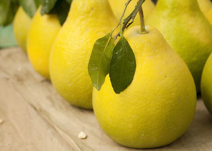 Bạn có thể quét vôi lên đầu cuống cam, chanh, bưởi để giữ cho quả được lâu.