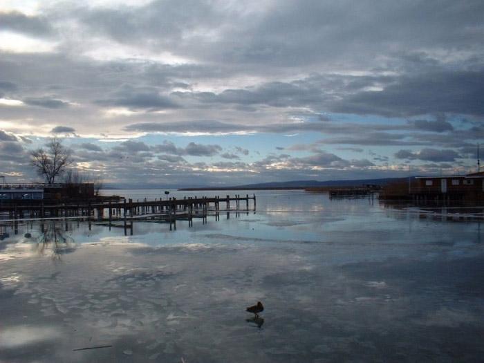 Vùng hồ nước mặn lớn đã tạo ra một rừng ngập mặn với hệ sinh thái đa dạng cho toàn bộ khu vực