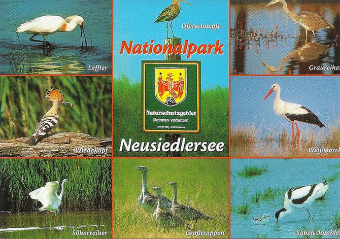 Công viên quốc gia Neusiedlersee đã được thành lập nhằm bảo vệ cảnh quan thiên nhiên, môi trường và hệ sinh thái cho toàn khu vực.