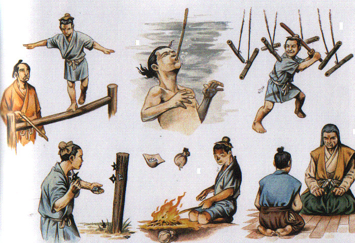 Về cơ bản, ninjutsu dạy con người ta cách để chiến đấu trong một cuộc chiến tình báo cũng như việc kiểm soát thông tin.