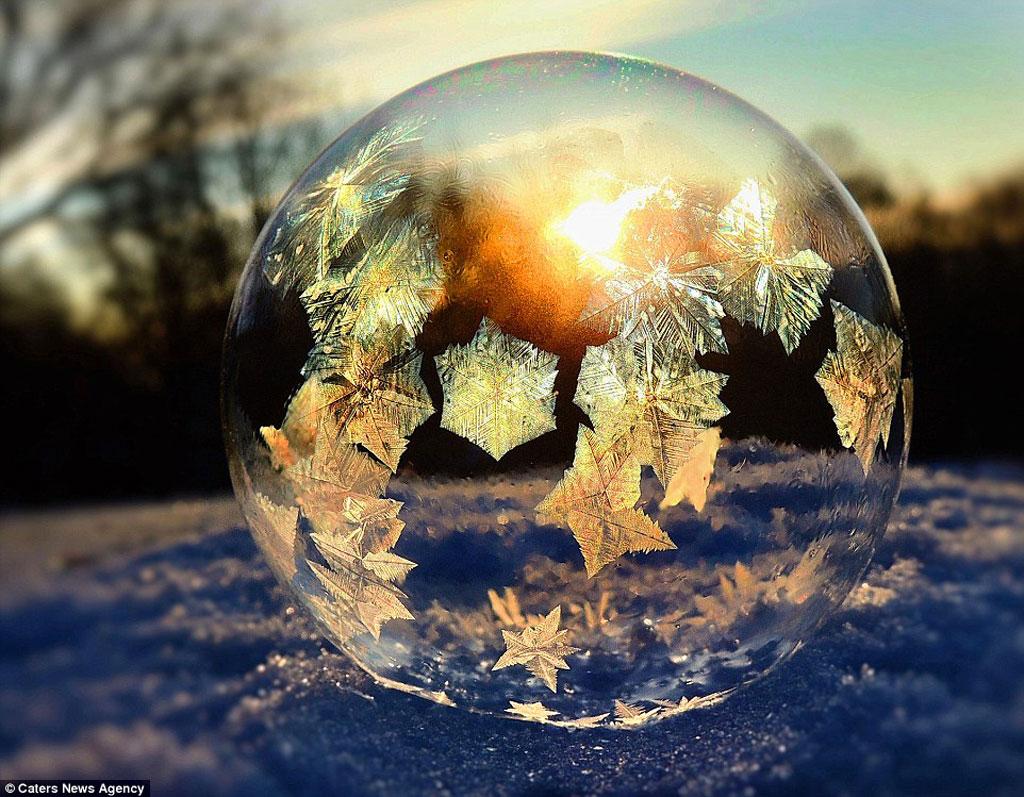 """Nhiếp ảnh gia 49 tuổi nói: """"Tôi đã thấy hình ảnh của những bong bóng đóng băng này trên mạng từ năm trước. Với tư cách là một nhiếp anh giả yêu vẻ đẹp của những loài hoa, điều này đã tạo nên cảm hứng sáng tạo cho tôi trong mùa đông."""""""