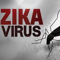 Tại sao WHO lo sợ Zika hơn cả dịch Ebola?