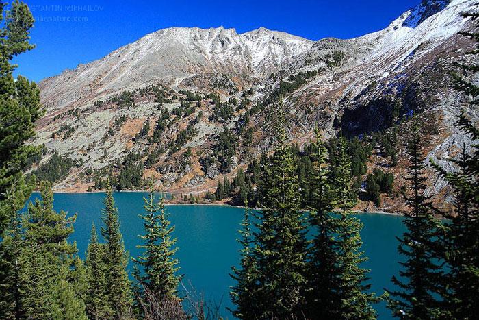 """Bằng các đánh giá vân gỗ tại dãy Altai, các nhà khoa học biết được 1500 năm trước đã có một """"kỷ băng hà"""" xảy ra"""