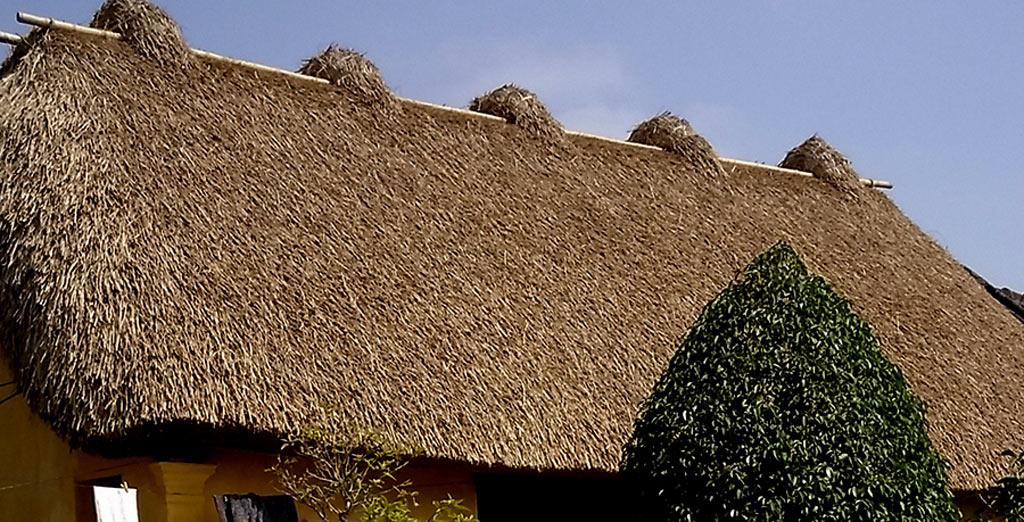 """Trên nóc nhà có 5 ụ rơm nhỏ, gọi là các con rom hay """"ngũ phúc"""", là các thanh tre, thép, được cuộn rạ để bắt chặt mái, tránh gió bão và cũng để trang trí cho mái nhà."""